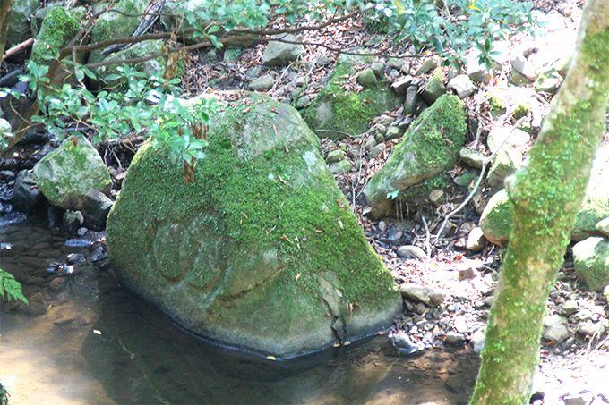 奈良の自然、他の自然とはどう違うの?