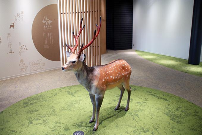 奈良県でも独自の観光支援策を実施