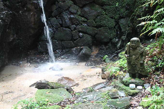 天然記念物の豊かな里山の自然