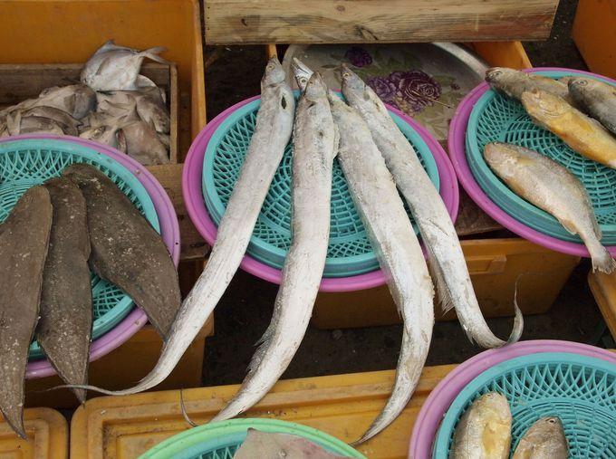 魚や野菜も天然凍結!河川敷の露店を冷やかそう
