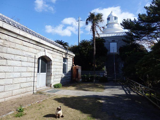 七不思議「阿弥陀様の姿をした牡蠣」とレトロかわいい姫島灯台