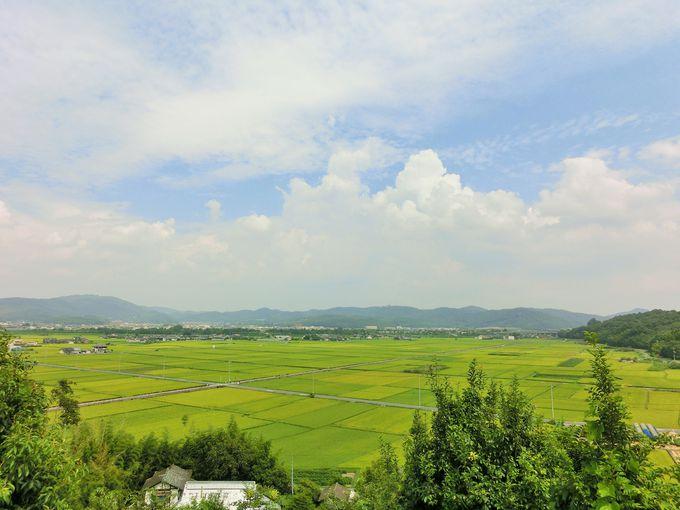 造山古墳からの眺めは絶景!