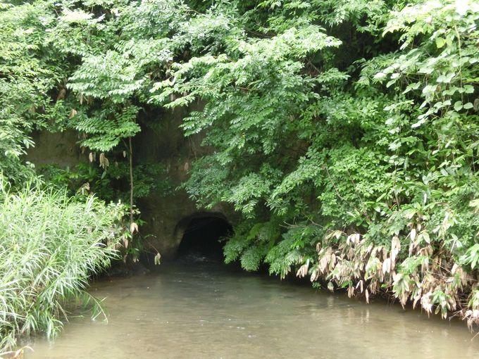 白虎隊はここから飯盛山に登った!戸ノ口堰洞穴