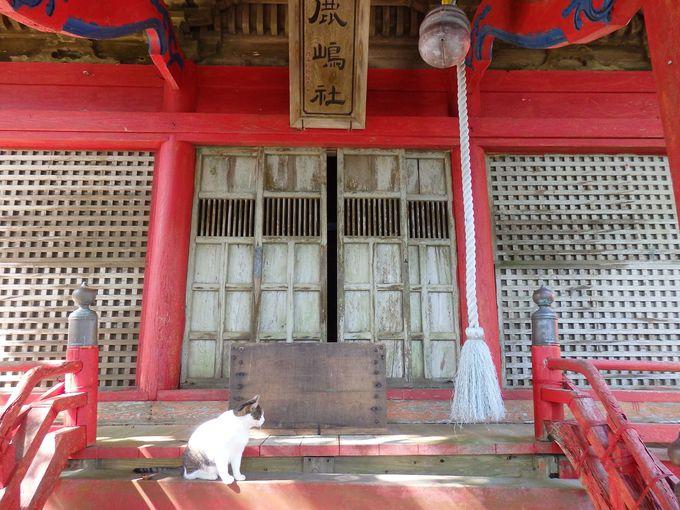 新緑に赤が映える鹿嶋神社