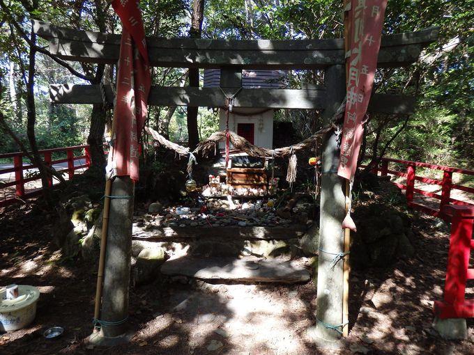 猫を祀る猫神社