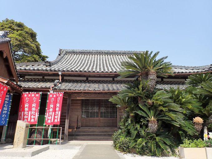 タコが守った阿弥陀如来を祀る安楽寺