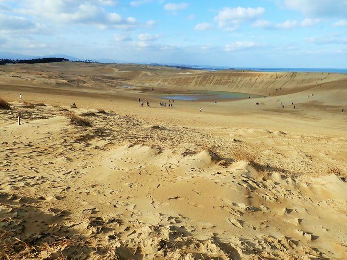 そもそも鳥取砂丘とは