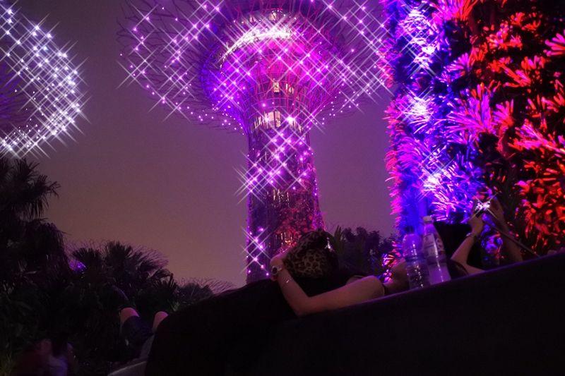 「OCBCガーデンラプソディ」幻想的な音と光のショーに酔いしれる