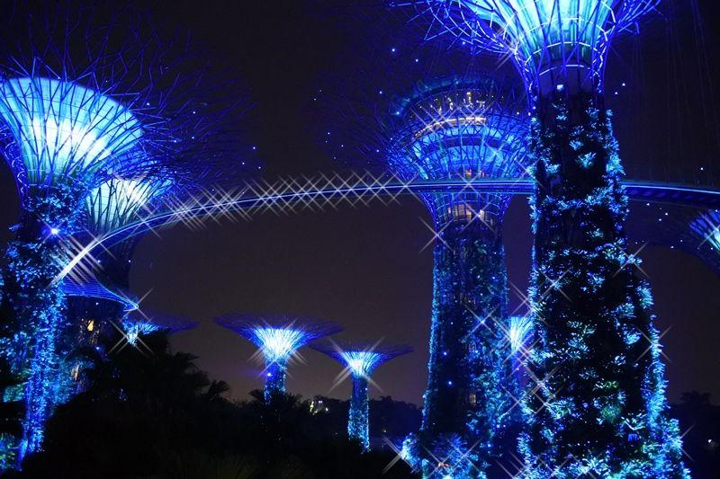 え、未来に来ちゃった!?シンガポール「OCBCガーデン・ラプソディ」めくるめく光のショー