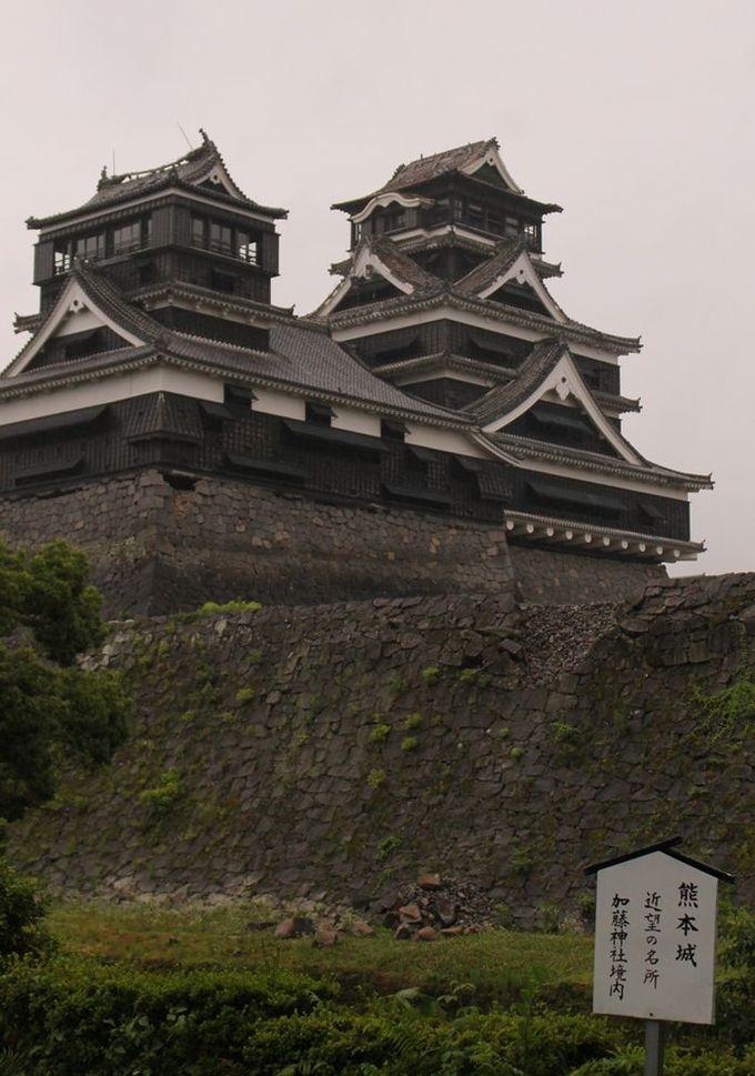 今、熊本城をいちばん近くから見られる「加藤神社」