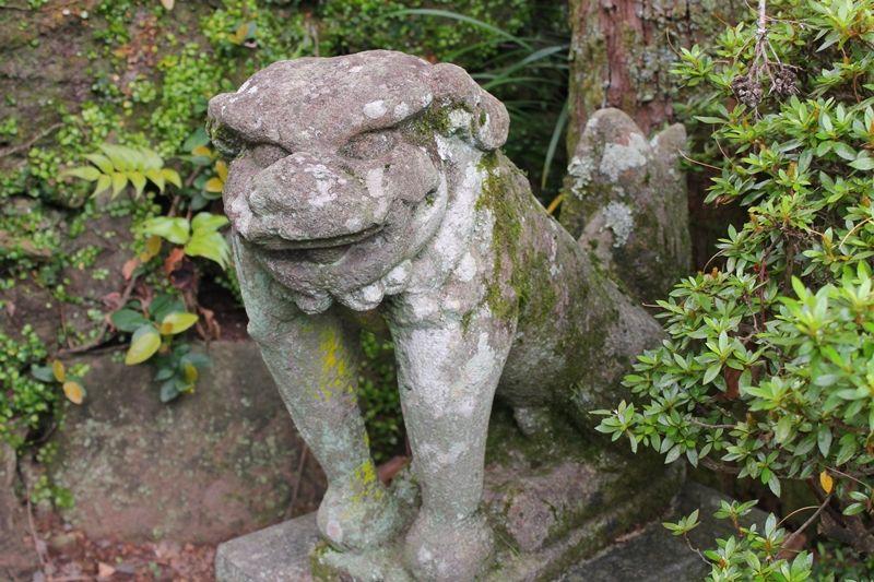 諏訪神社の癒しスポット「トゲ抜き狛犬」