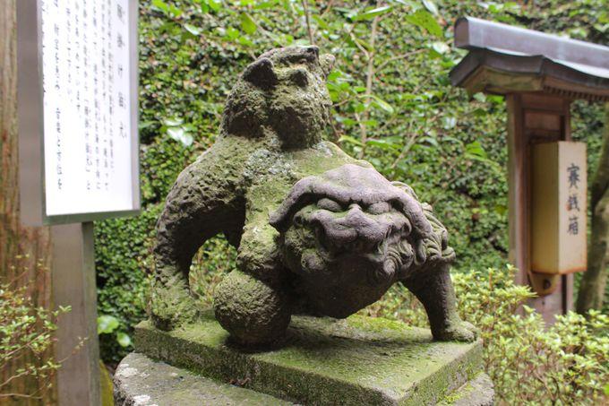 諏訪神社に江戸時代から伝わる「願掛け狛犬」