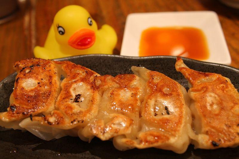 「元祖博多だるま」博多の定番「豚骨ラーメン+半ぎょうざ」