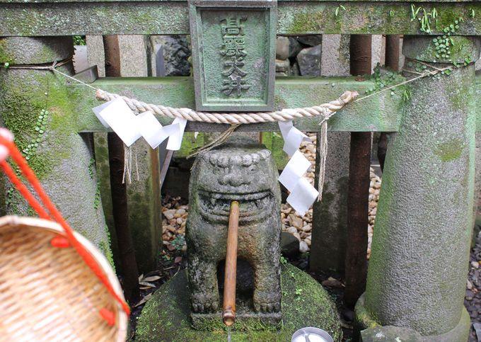 長崎「諏訪神社」で金運アップ!「高麗犬の井戸」