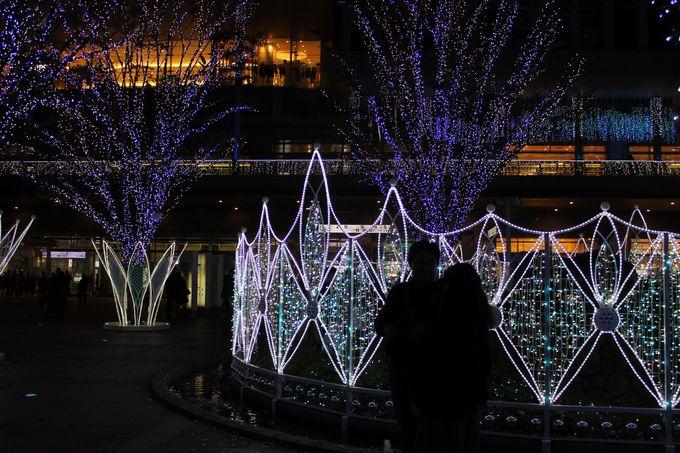 博多駅前広場が幻想的な「光の森」に!