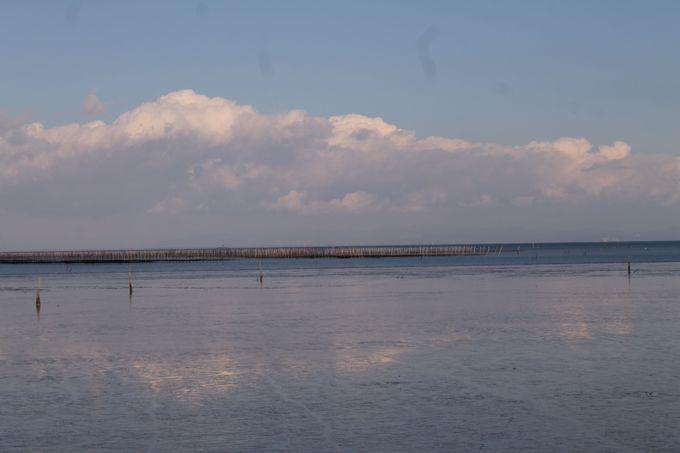 佐賀県太良町「たらカキ焼海道」は、竹崎牡蠣の名産地