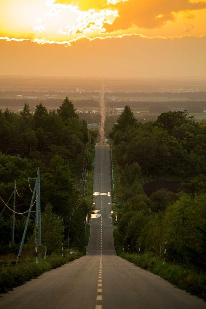 坂道の頂上から見る「天へと続く1本道」