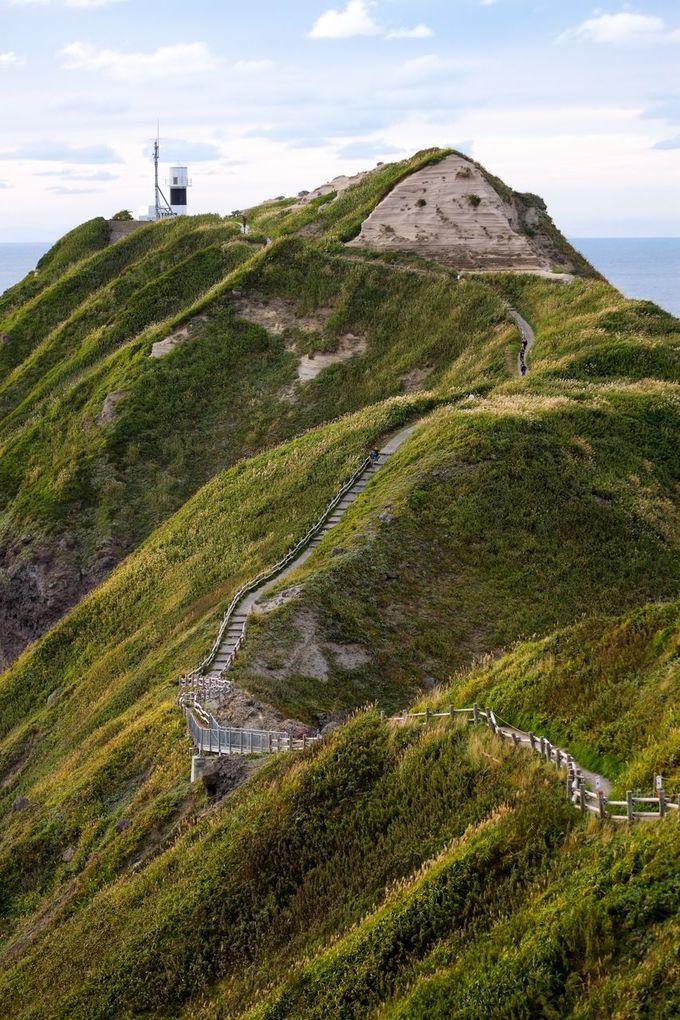 岬への遊歩道