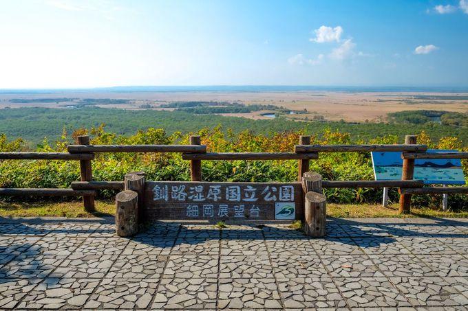 日本最大「釧路湿原」で北海道の雄大な景色を眺めよう