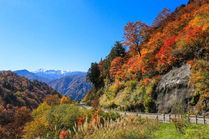 絶景、紅葉、名滝!白山白川郷ホワイトロード