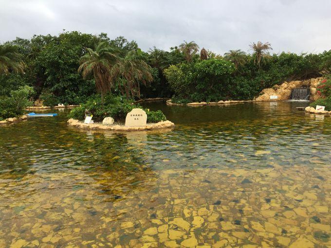 日本最南端&最西端!シギラ温泉