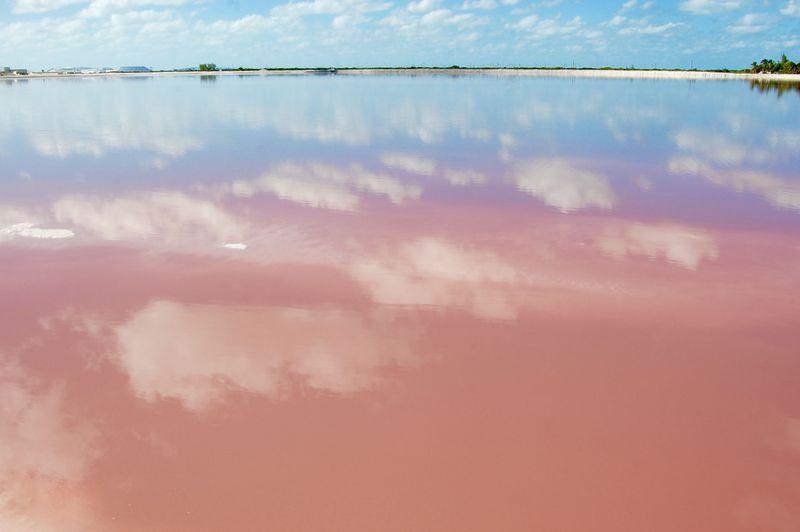 まるで夢の世界!本当は教えたくないメキシコの絶景「ピンク・ラグーン」