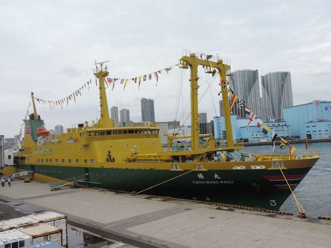 復活した「東京湾の女王」は、かなり斬新なカラーリング!?