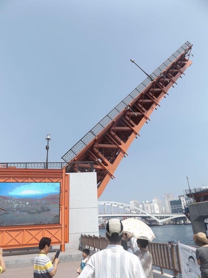隠れた「釜山最高のビューポイント」