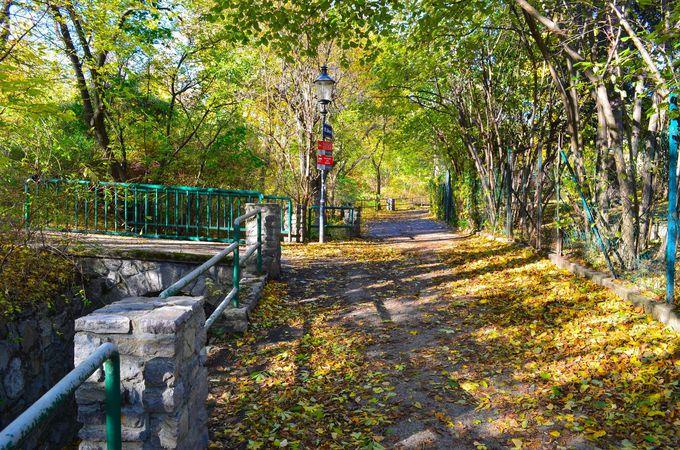 紅葉の美しいベートーヴェンの散歩道