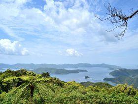 絶景!奄美大島で絶対行きたいおすすめスポット10選