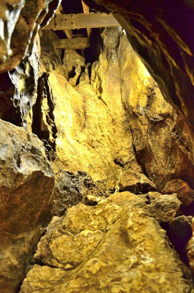 茶褐色化した石灰岩を見る