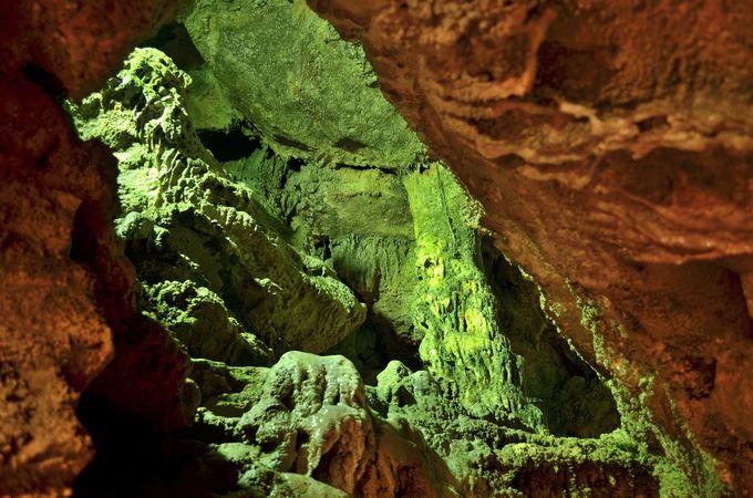 「七ツ釜鍾乳洞」総延長1500mの洞窟群へいざ潜入