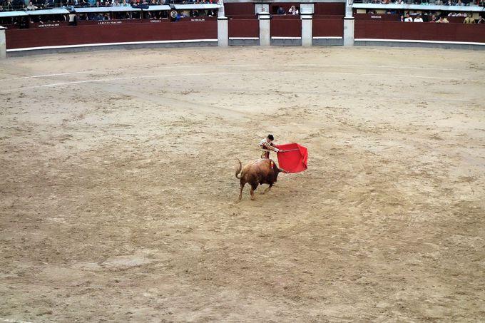 闘牛の流れと観戦のポイント