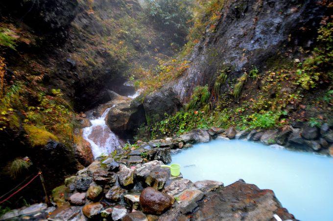 妙高高原で湯巡りを!