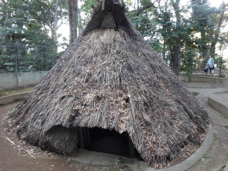 4500年前から人が住んでいた!?代々木八幡遺跡