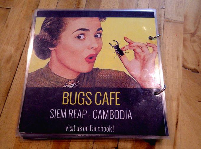 8.Bugs Cafe