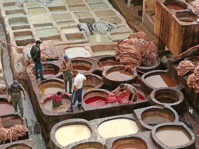 巨大な絵の具パレット!?昔ながらのなめし革工場「タンネリ」