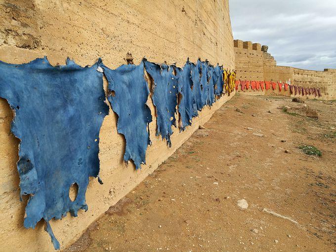 革の干された城壁からフェズの街を一望