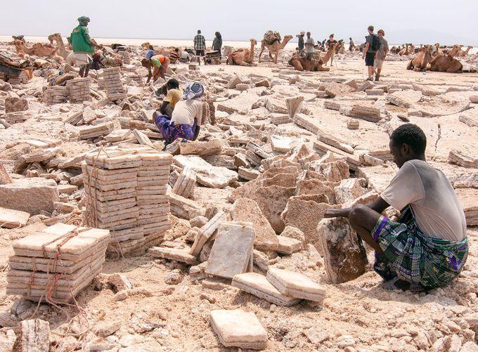 見所4:大地から塩を切り出す「塩の採掘場」