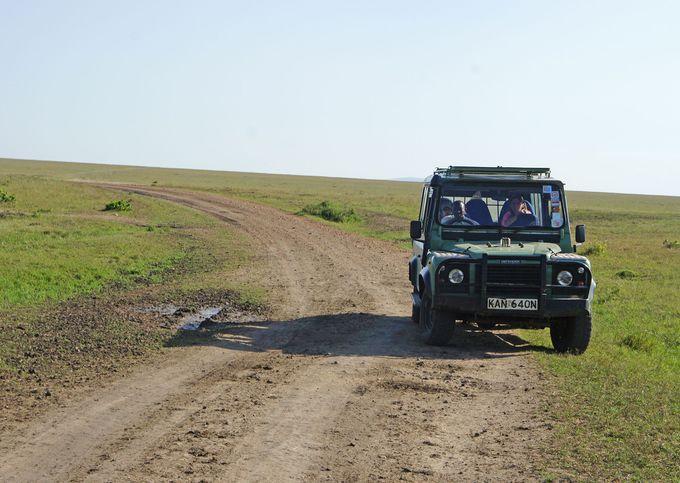 マサイ・マラ国立保護区は1泊2日で楽しめる?ツアースケジュール例も