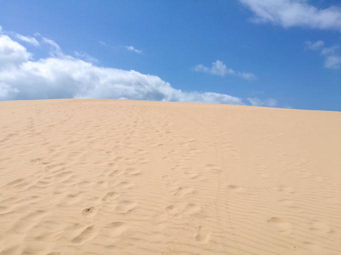 まずは島を散策!砂丘にも登ってみよう