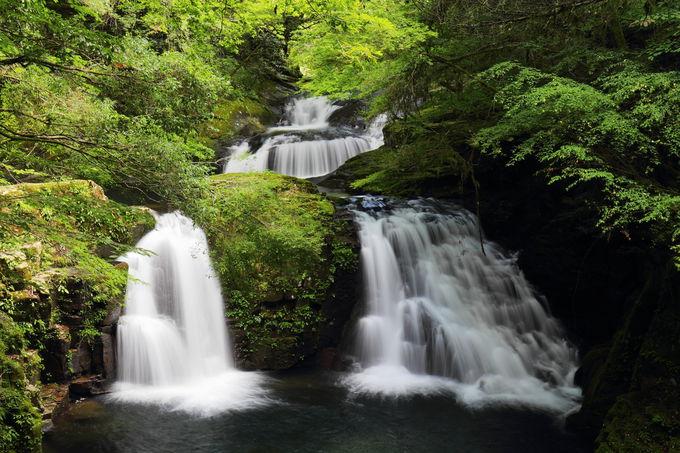 少し足を延ばして滝三昧の旅