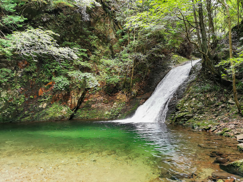飛び込みたくなるエメラルドグリーン!奈良・曽爾村「済浄坊の滝」