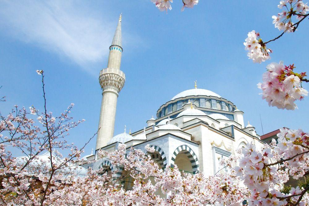 代々木上原でトルコ満喫!イスラム体験できる東京ジャーミイ