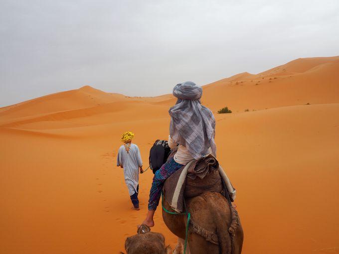 オリジナルのプランが作れる!砂漠の民の砂漠ツアー