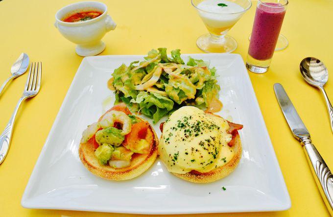 伊豆高原を見渡せるサンラウンジで料理を堪能!