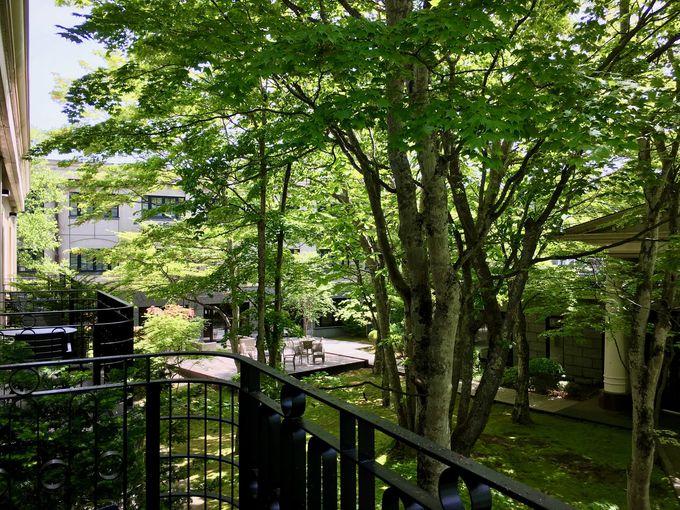 旧軽井沢の静寂と木々の温もりを感じる客室