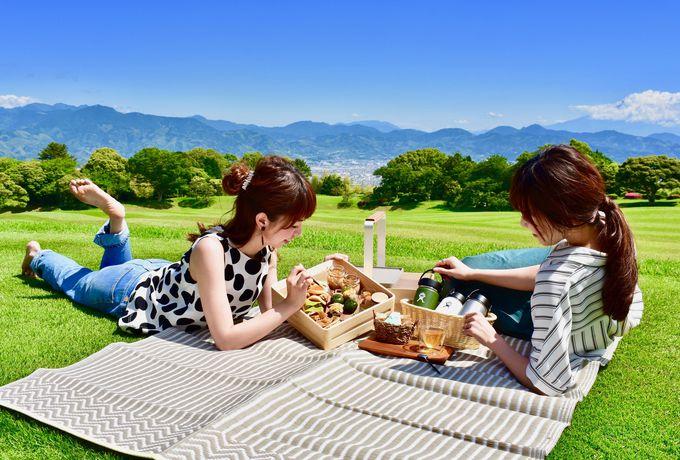 風景美術館とも評された「日本平ホテル」とは?