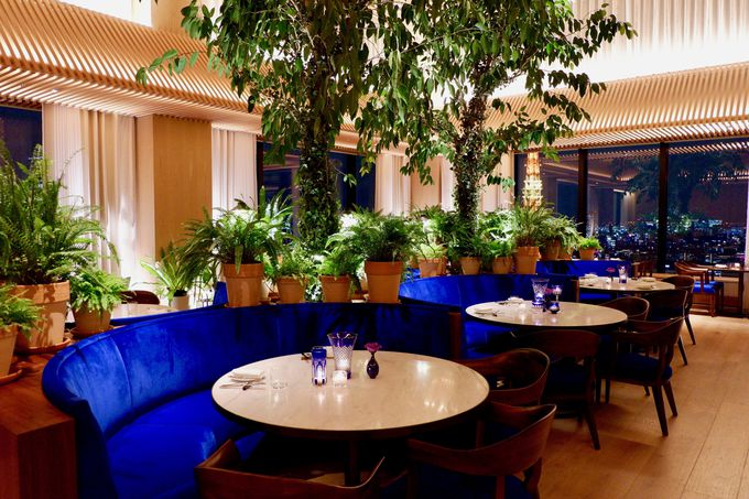ゲストの五感を刺激するディナーやカクテル!
