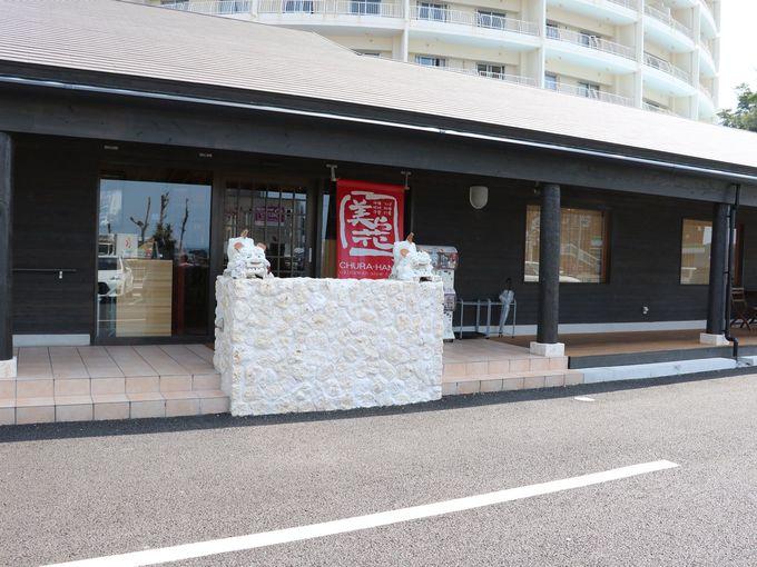 名護の美味しい沖縄料理の店が新装開店!